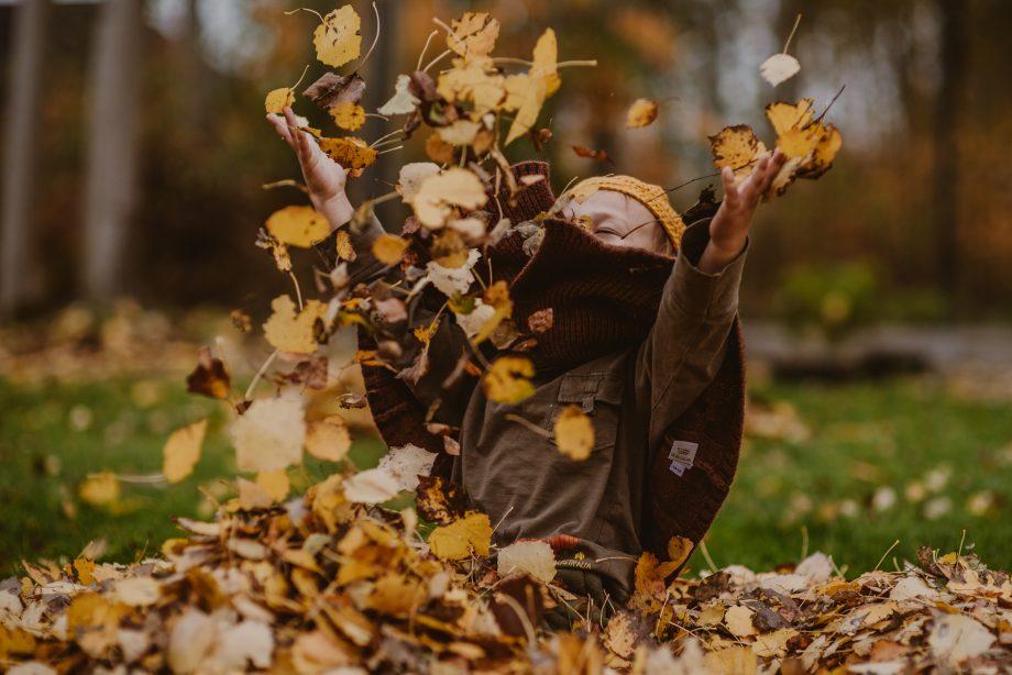 Sesja jesienna