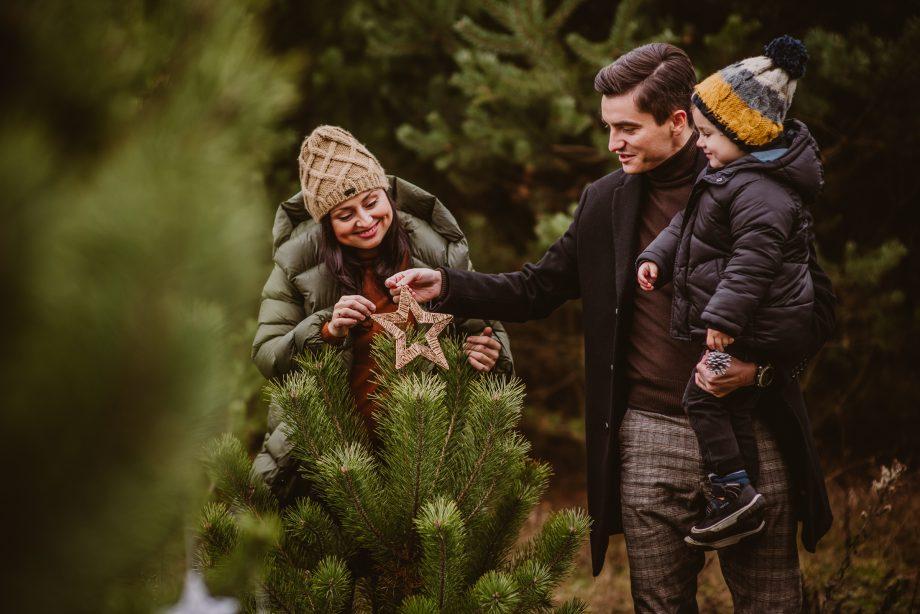 naturalna Sesja świąteczna-1
