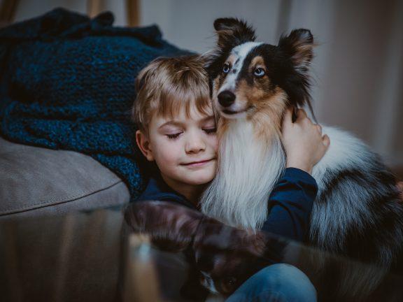 sesja z psem