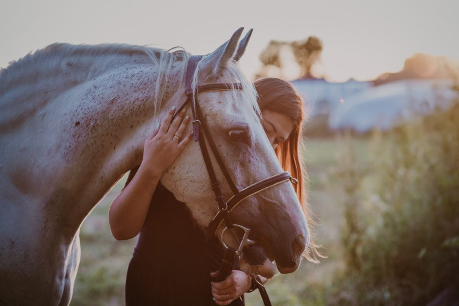 sesja z koniem warszawa